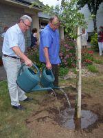 Plantation du pommier offert par nos amis allemand d'Altenbruch